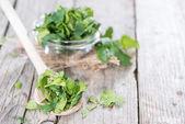 Cuchara de madera con cilantro — Foto de Stock