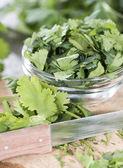 Portion of fresh Cilantro — Stock Photo