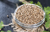 Coriander Seeds — Stock Photo