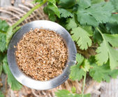 Bowl with crushed Coriander — Stock Photo