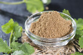 Portion of Coriander Powder — Stock Photo