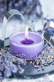 Lavender Candle — Stock Photo