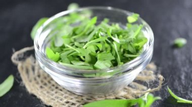 Green Tarragon — Vídeo Stock