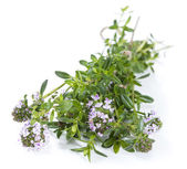 Winter Savory (isolated on white) — Foto de Stock