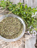 Portion of Winter Savory — Foto Stock