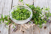 Fresh Winter Savory in a bowl — Stock Photo