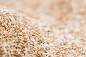 Sesame Background — Stock Photo