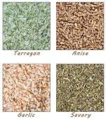 Dried Herbs (Tarragon, Anise, Garlic and Savory) — Stock Photo