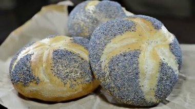 Poppyseed Buns — Stock Video