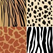 Set of giraffe, cheetah, tiger and zebra skins vector — Stock Vector