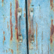 Stock Photo: Rusty iron gate