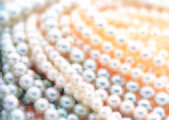 Pearl necklace, jewelry — Stock Photo