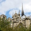 Notre dame — Stock Photo #13512449