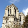 Notre dame — Stock Photo #13512599