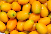 Mandarins — Stockfoto