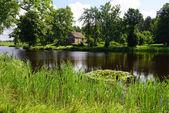 Tranquil lake — Stock Photo