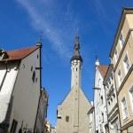 Tallinn — Stock Photo #31001703