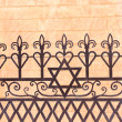 Stock Photo: Ornamental fence