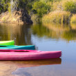 Stock Photo: Colored canoes