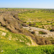 Stock Photo: National Park in Negev
