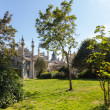 Brighton Royal Pavilion — Stock Photo #13316293