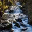 Stock Photo: Watersmeet Devon England