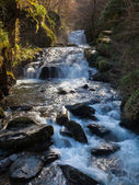 Watersmeet Devon England — Stock Photo
