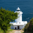 Tater Du Lighthouse Cornwall — Stock Photo #26280437