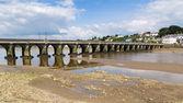 Bridge at Bideford Devon — Stock Photo