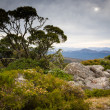 Mount William, Australia — Stock Photo