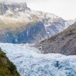 Fox Glacier West Coast South Island New Zealand — Stock Photo