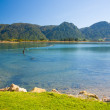 Collingwood New Zealand — Stock Photo