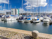 Sutton Harbour Marina Plymouth — Stockfoto