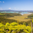 Waitangi, Bay of Islands, Paihia, Northland, New Zealand — Stock Photo