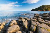 Leigh North Island New Zeland — Stock Photo