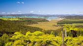 Waitangi, Bay of Islands, Paihia, Northland, New Zealand — Stock Photo
