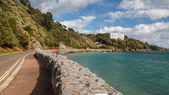 Meadfoot Bay Torquay — Stock Photo