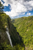 Ellenborough Falls — Stock Photo