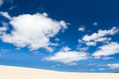 Henty Sand Dunes Tasmania — Stock Photo