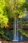 Russell Falls Tasmania Australia — Stock Photo