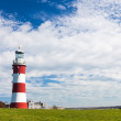 Smeatons Tower Plymouth Devon — Stock Photo #51482279