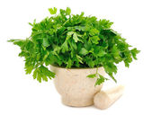 Marble Mortar and parsley — Stock Photo