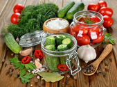 Ingredients for pickling cucumbers and tomatoes — Stock Photo