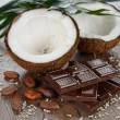 Stock Photo: Coconut and chocolate