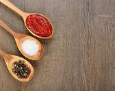 Spices, salt and tomato sauce — Stock Photo