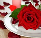 Rose på en vit platta — Stockfoto
