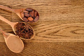 Cinnamon, anise and cocoa beans in wooden spoons — Stock Photo