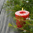 Candle and green twigs — Stock Photo