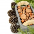 Various nuts in a wooden box — Stock Photo
