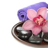 Massage steine und orchidee — Stockfoto